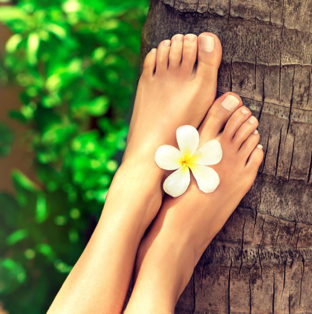 a set of feet with a flower held between them, resting on a tree trunk in a tropical setting | baby foot peel